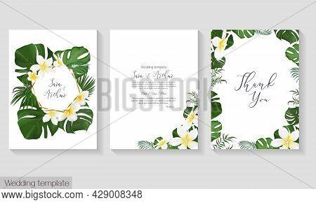 Vector Tropical Wedding Invitation Template. White Plumeria, Frangipani, Monster, Palm Leaves, Tropi