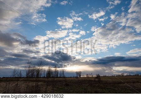 Evening Spring Blue Sky With White Clouds. Dark Silhouettes Of Trees And Shrubs. Evening Landscape A