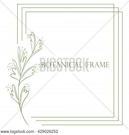Rectangular Triple Frame With Botanical Element Vector Illustration. Natural Plain Rim. Minimalistic
