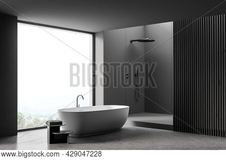 Panoramic Bathroom Interior With Dark Panel Partition, On-trend Tub, Shower Area, Original Stool, Co