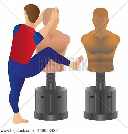 Dummy For Sports Exercises. The Athlete Practices Out Blows On A Sports Dummy. Sports Dummy.