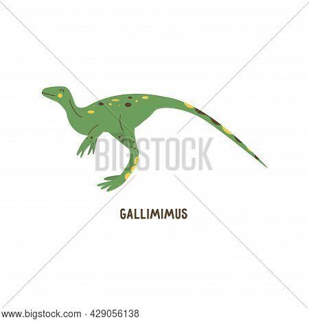 Dinosaur Gallimimus. Large Omnivorous Animal, Extinct Ancient Reptile, Jurassic Period. Colorful Vec