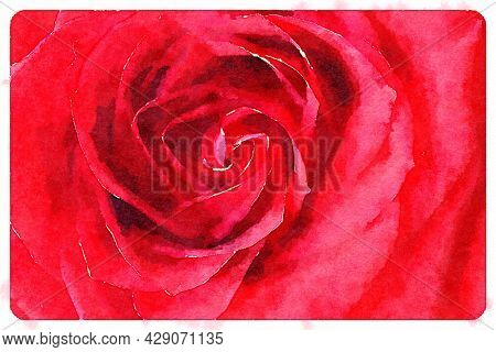 Hand painted water color art illustration. Beautiful classic watercolor painting of a close up of red rose flower. Wall art for prints and canvas.