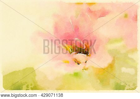 Hand painted water color art illustration. Beautiful abstract watercolor painting of a flower. Wall art for prints and canvass.