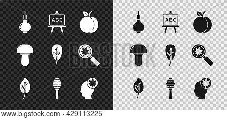 Set Onion, Chalkboard, Peach Fruit, Leaf Or Leaves, Honey Dipper Stick, Human Head With Leaf, Mushro