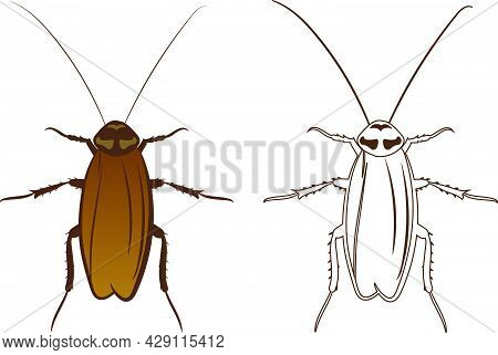 Cockroach Or Blattodea Vector Illustration Fill And Outline Isolated On White Background. Insects Bu