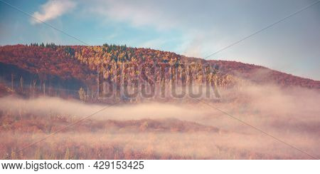 Autumnal Countryside Scenery On A Foggy Morning. Trees In Colorful Foliage. Blue Sky With Clouds. We