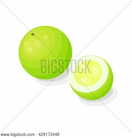 Bright Citrus Hybrid Oroblanco In Cartoon Style Isolated On White Background.