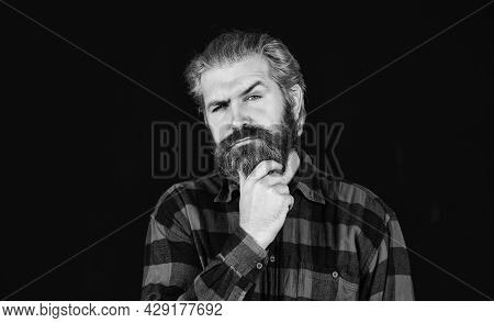 Brutal Caucasian Hipster With Moustache. Male Barber Care. Bearded Man. Hair And Beard Care. Confide