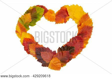 Frame In The Shape Of A Heart Made Of Bright Autumn Leaves On A White Isolated Background. Red-yello