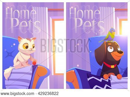 Home Pets Cartoon Posters With Cute Kitten Play With Ball On Armchair, Parrot Sitting On Dog Head At