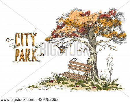 An Empty Bench Under Crown Tree With Lantern In Autumn Park Or Garden.