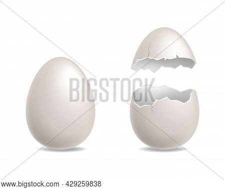 Egg Cracked. White Chicken Eggs Realistic, Whole And Broken Element. Cracks And Debris Eggshell, Cul