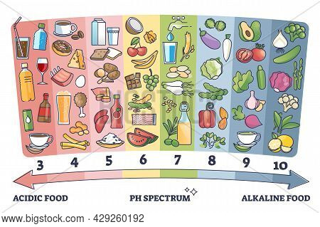 Acidic Vs Alkaline Eating Foods Meal Examples On Ph Spectrum Outline Diagram. Labeled Educational Sc
