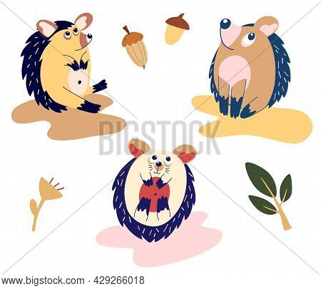 Set Of Funny Cartoon Hedgehogs. Cute Hedgehogs In Different Poses. Woodland Animals For Children's D