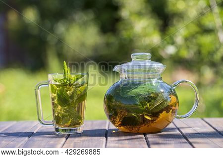 Healthy Nettle Tea In A Glass Tea Pot And Mug In The Summer Garden On Wooden Table. Close Up Herbal