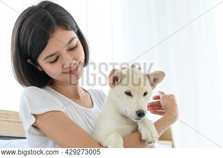 White Shiba Inu Japanese Pedigree Adorable Puppy Staying On Bed With Young Woman In Bedroom. Pet Lov