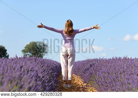 Back View Portrait Of A Casual Woman Outstretching Arms Celebrating In Lavender Field