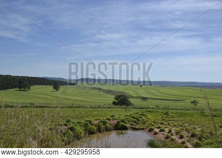 Panoramic Or Landscape Of Nature With Small Lake In The Foreground, Paved Road In The Background And