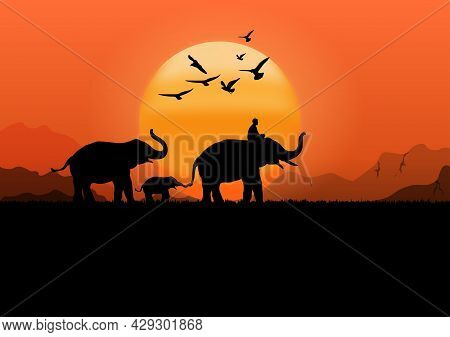 Silhouette Image Black Elephant With Elephant Mahout Walking At The Forest With Mountain And Sunset