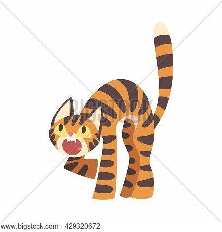 Tiger Character With Orange Fur And Black Stripes Roaring Vector Illustration