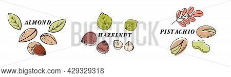 Nuts Color Line Icons Set. Nuts Are The Hard-shelled Fruit Of Certain Plants. Hazelnut, Almond, Waln