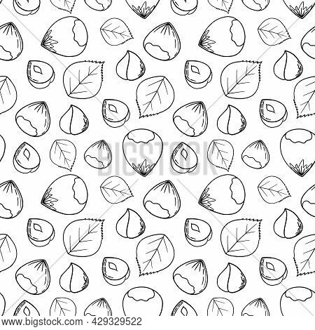 Hand Drawn Sketch Illustration Seamless Background Pattern With Hazelnuts. Vector Illustration Of Nu