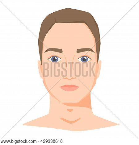 Young White Man Face With Shot Haircut. Male Portrait Of Brunette In Flat Style. Front View. Vector