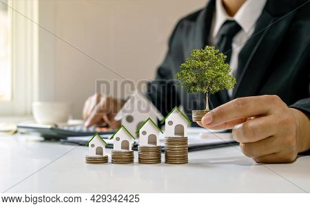 Real Estate Agent Holding The Coin With Growing Tree And House Model On The Pile Of Home Loan Concep