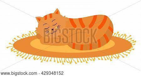 Cute Orange Cat Sleeping On Oval Fringed Rug. Funny Cartoon Character.