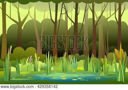 Beautiful Summer Forest Landscape. Swampy Coast With Cattails And Reed. Flat Style. Leaves Of Water