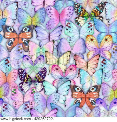 Seamless Watercolor Botanical Summer Pattern With Colorful Butterflies. Watercolour Hand Drawn Botan