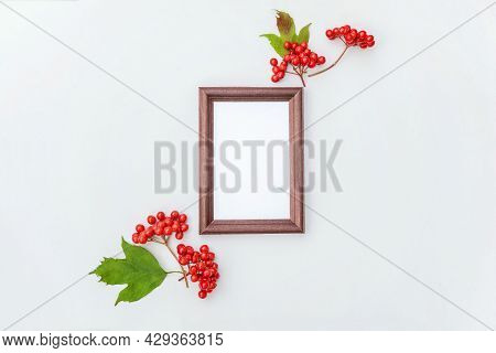 Autumn Floral Composition. Vertical Photo Frame Mockup Viburnum Berries On White Background. Autumn