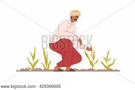 Happy Indian Farmer Working On Organic Agriculture Field. Smiling Farm Worker On Plantation In India