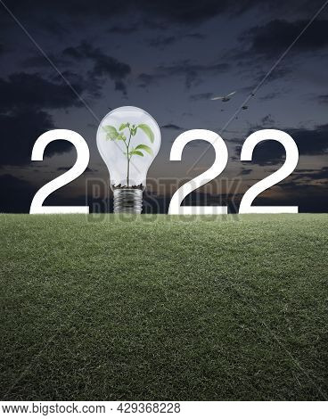 2022 White Text And Light Bulb With Small Plant Inside On Green Grass Field Over Sunset Sky With Bir