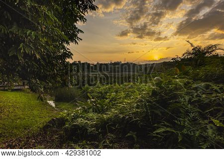 Sunset In A Wetland Park. The Sun Goes Down Behind The Clouds In The Sky And Colors The Scene In A M