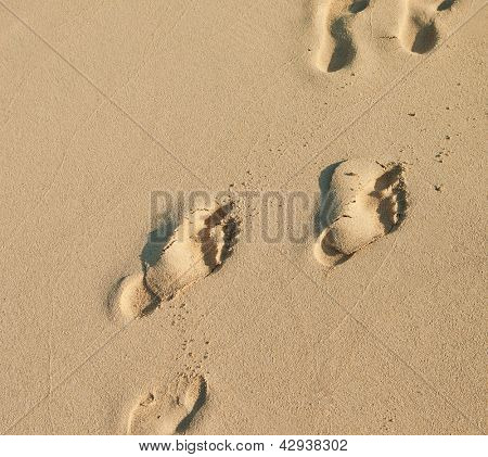 human footprints on the sea sand on the beach in Dubai, UAE