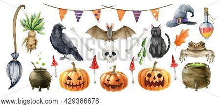 Halloween Symbol Single Element Set. Hand Drawn Autumn Festive Halloween Collection. Watercolor Toad