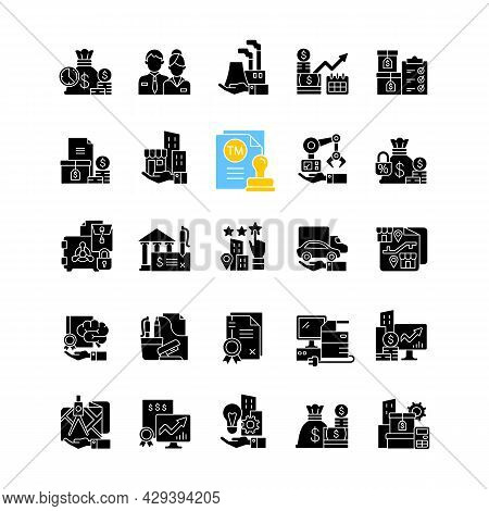 Business Assets Black Glyph Icons Set On White Space. Items Of Value Owned By A Company. Resources F