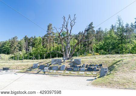 Rogoznica, Poland - June 3, 2021: Memorial Plaques At Kl Gross-rosen. Gross-rosen Was A Network Of N
