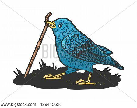 Bird Bluebird Pulls The Worm Out Of The Ground Color Sketch Engraving Vector Illustration. T-shirt A