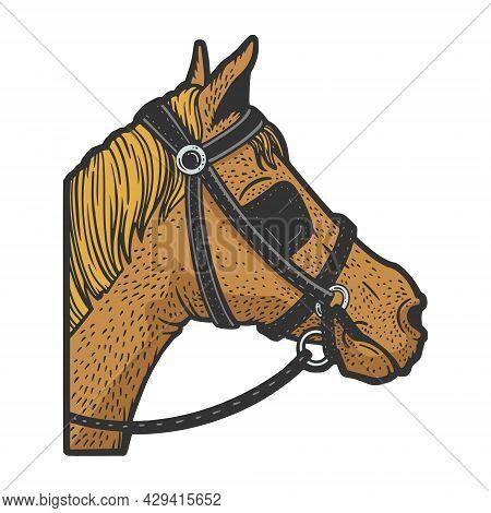 Blinkers Horse Tack On Horse Eyes Color Sketch Engraving Vector Illustration. T-shirt Apparel Print
