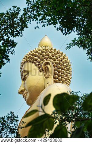 Giant Golden Buddha Statue Of Dhammakaya Thep Mongkol Buddha In Construction Site Located At Wat Pak