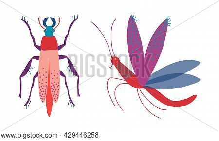 Mosquito And Stag Beetle Insects As Hexapod Flying Creature With Jointed Legs And Pair Of Antennae V