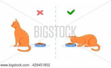 Cats With Good And Bad Appetite. Picky Cat Refusing To Eat And Hungry Cat Eating Food In Bowl. Feedi