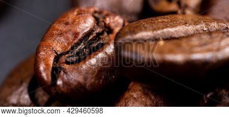 Close Up Of A Coffee Bean. Macro Photography Of Coffee Beans In High Resolution. Detailed Ultra Macr