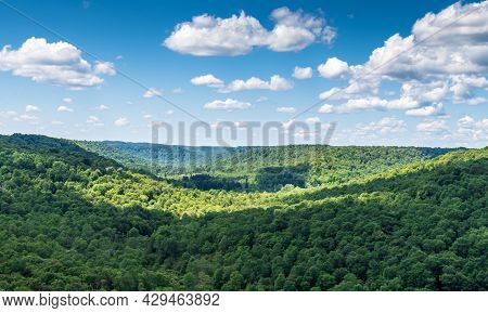 Overlooking The Allegheny National Forest In Mt Jewett, Pennsylvania, Usa On A Sunny Summer Day