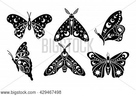 Mystical Boho Celestial Butterfly And Moth Isolated Cliparts Bundle, Mystical Collection, Moon And S