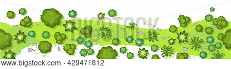 Dry River Bed. Jungle Forest Top View. Horizontal Seamless Composition. Overgrown Rainforest. Isolat