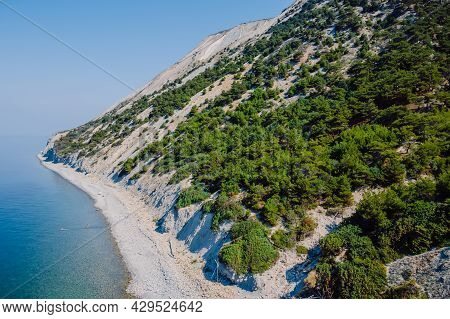 Cliff Coastline With Sea And Highest Cliff With Pine Trees. Summer Day On Sea. Aerial View